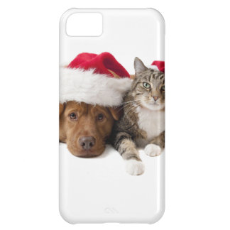 Capa Para iPhone 5C Gatos e cães - gato do Natal - cão do Natal