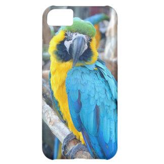 Capa Para iPhone 5C Papagaio colorido - caso do iPhone 5