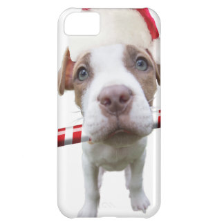 Capa Para iPhone 5C Pitbull do Natal - pitbull do papai noel - cão de