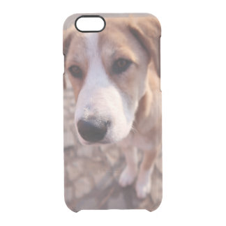 Capa Para iPhone 6/6S Transparente Cão disperso