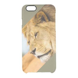 Capa Para iPhone 6/6S Transparente Leão grande que olha longe
