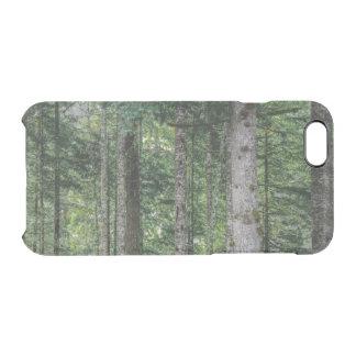 Capa Para iPhone 6/6S Transparente Nas madeiras