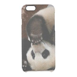 Capa Para iPhone 6/6S Transparente Pandas do bebê que jogam - panda bonito da panda