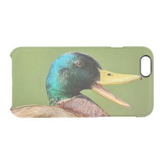 Capa Para iPhone 6/6S Transparente retrato do pato do pato selvagem