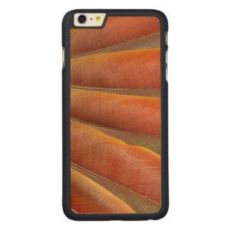 Capa Para iPhone 6 Plus De Bordo, Carved Escarlate das penas Vermelho-Alaranjadas do Macaw
