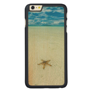 Capa Para iPhone 6 Plus De Bordo, Carved Estrela de mar na água pouco profunda, Palau