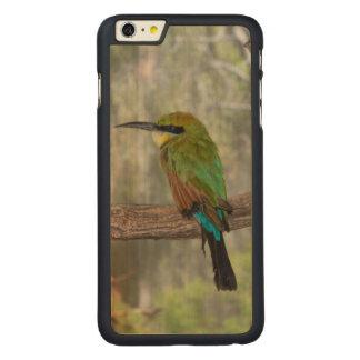 Capa Para iPhone 6 Plus De Bordo, Carved Pássaro do abelha-comedor do arco-íris, Austrália