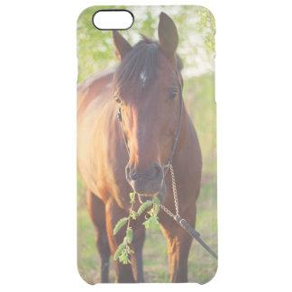 Capa Para iPhone 6 Plus Transparente coleção do cavalo. primavera