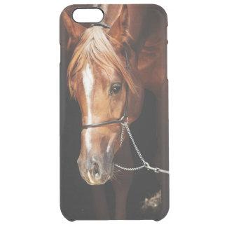 Capa Para iPhone 6 Plus Transparente coleção do cavalo. vermelho árabe
