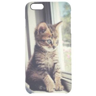 Capa Para iPhone 6 Plus Transparente Observação do gatinho do gato malhado