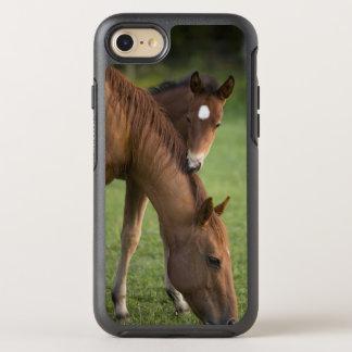 Capa Para iPhone 8/7 OtterBox Symmetry Égua e potro de um quarto americanos do cavalo no