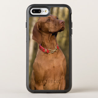 Capa Para iPhone 8 Plus/7 Plus OtterBox Symmetry Cão ostentando bonito de Vizsla