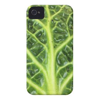 Capa Para iPhone Berza chou couve-de-milão Savoy cabbage vert