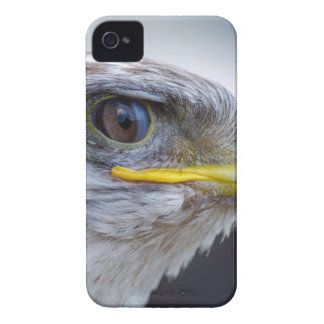 Capa Para iPhone Branco e retrato de Brown Eagle