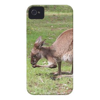 Capa Para iPhone Canguru, interior Austrália