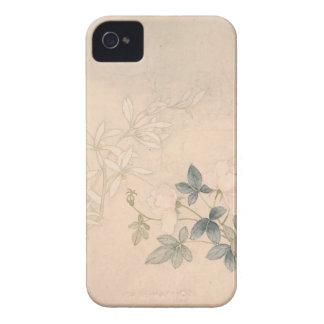 Capa Para iPhone Estudo 2 da flor - YUN Bing (chinês)