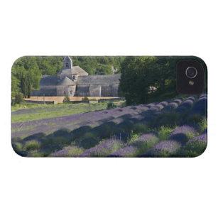 Capa Para iPhone France, Gordes, abadia de Senaque, campo da