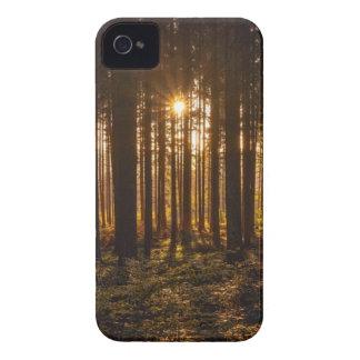 Capa Para iPhone Ideia de árvores pretas e de Sun