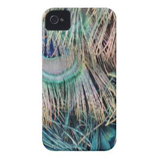 Capa Para iPhone O pavão empluma-se o verde e o azul de Tan