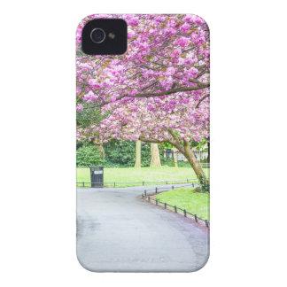 Capa Para iPhone Parque bonito durante o primavera