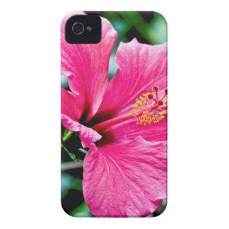 Capa Para iPhone Pink hibisco