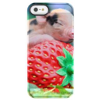 Capa Para iPhone SE/5/5s Transparente porco da morango