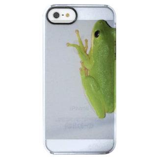 Capa Para iPhone SE/5/5s Transparente Sapo de árvore verde