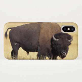 Capa Para iPhone X bisonte, bisonte do bisonte, touro no nacional de