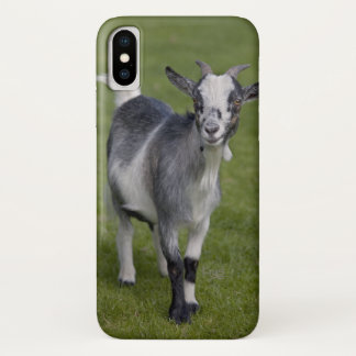 Capa Para iPhone X Caso do iPhone X da cabra do pigmeu