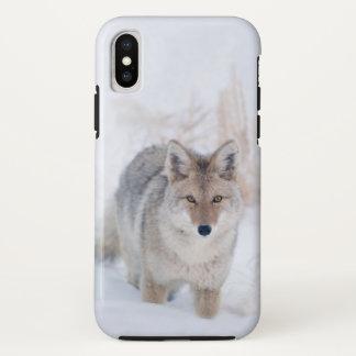 Capa Para iPhone X Chacal na neve no caso do iphoneX de Yellowstone