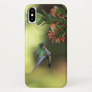 Capa Para iPhone X Colibri verde