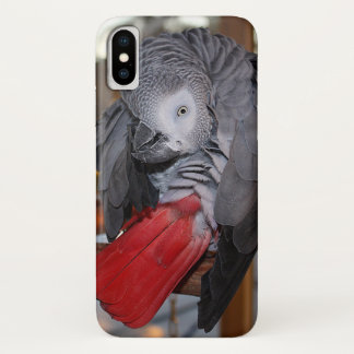 Capa Para iPhone X Papagaio flexível do cinza africano de Congo com