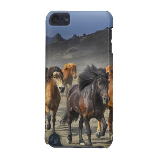 Capa Para iPod Touch 5G Cavalos selvagens