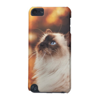Capa Para iPod Touch 5G Gato