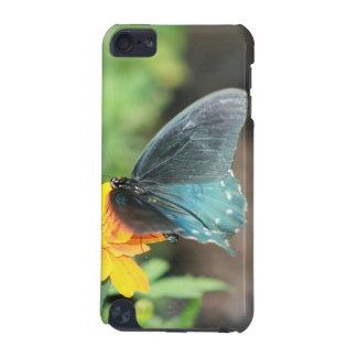 Capa Para iPod Touch 5G Produtos azuis do verão do Coreopsis do amarelo da