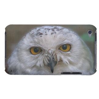 Capa Para iPod Touch Coruja nevado, Schnee-Eule 002,2,