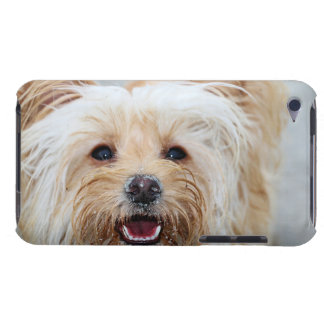 Capa Para iPod Touch Farris - Lucy - raça misturada