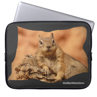 Capa Para Laptop Esquilo de HAMbyWhiteGlove - a bolsa de laptop