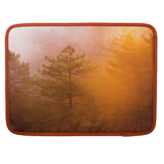 Capa Para MacBook Floresta dourada da corriola