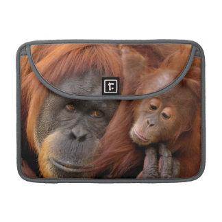 Capa Para MacBook Pro Orangotango da mãe & do bebê