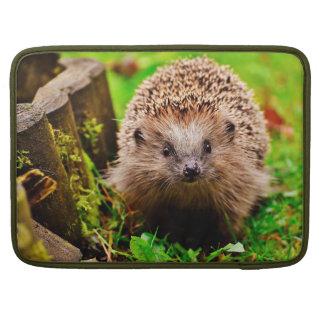 Capa Para MacBook Pro Ouriço pequeno bonito na floresta