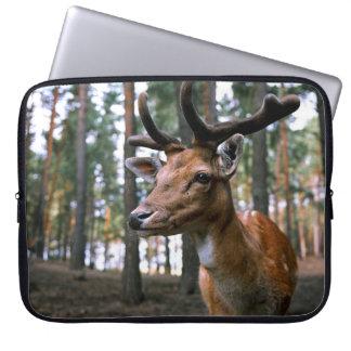 Capa Para Notebook Hirsch - selvagem