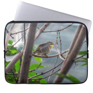 Capa Para Notebook Pássaro em uma bolsa de laptop da árvore
