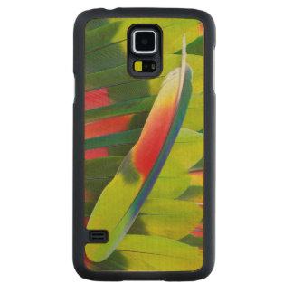 Capa Slim De Bordo Para Galaxy S5 De Amazon do papagaio da pena vida ainda