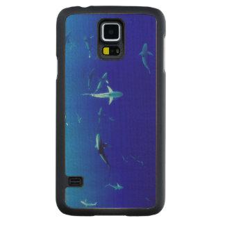 Capa Slim De Bordo Para Galaxy S5 Tubarões subaquáticos