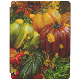 Capa Smart Para iPad Agrupamento do outono