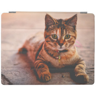 Capa Smart Para iPad Animal de estimação novo bonito do gatinho do