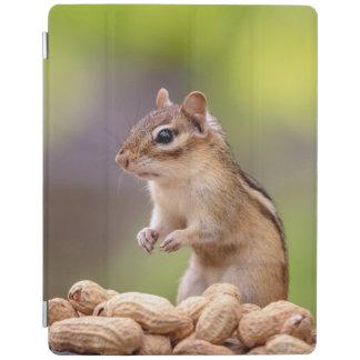 Capa Smart Para iPad Chipmunk com amendoins