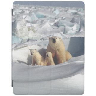 Capa Smart Para iPad Cobrir esperto do iPad ártico dos animais