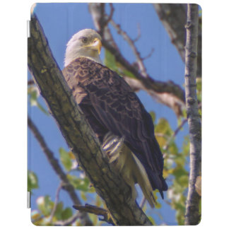 Capa Smart Para iPad Cobrir esperto do iPad da águia americana